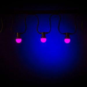 Feestverlichting rose lampen per 10 mtr., 220 v